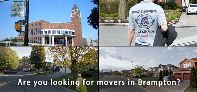 Brampton movers in Ontario