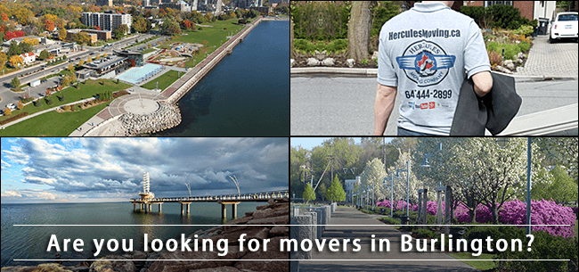 Burlington movers